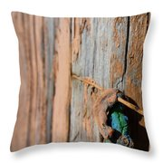 Unknown Object Throw Pillow
