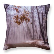 Unknown Road Throw Pillow