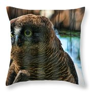 Unlawful Detention Throw Pillow