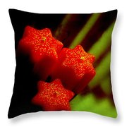 Unlighted Candles Throw Pillow