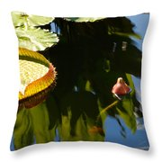 Unopened Water Lily And Reflections Throw Pillow
