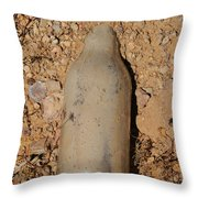 Unquenched Throw Pillow