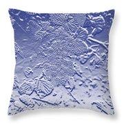 Unripe Blackberries In Blue  Throw Pillow