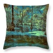 Unseen Wetland Throw Pillow