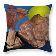 Untitled 01-16-10 Throw Pillow
