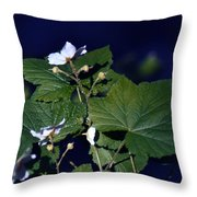 Untitled 01 Throw Pillow