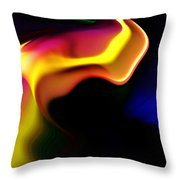 Untitled 11-28-09 Throw Pillow