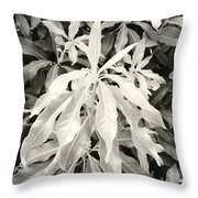 Untitled 20150903 Throw Pillow