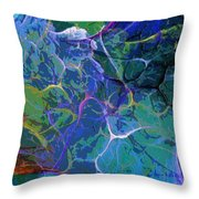 Untitled 5-2-10-a Throw Pillow