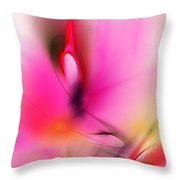 Untitled 5-2-10 Throw Pillow