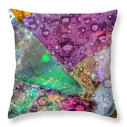 Untitled Abstract Prism Plates V Throw Pillow