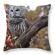 Untitled Owl Throw Pillow