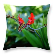 Unusual Flower 1 Throw Pillow