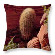 Unusual Locale Throw Pillow