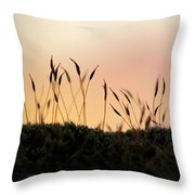 Unusual Sunset Throw Pillow