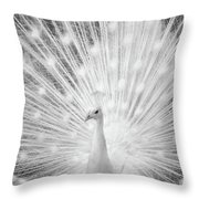 Unusually Beautiful Throw Pillow