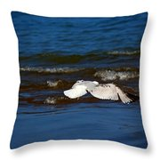 Up And Away Throw Pillow by Amanda Struz
