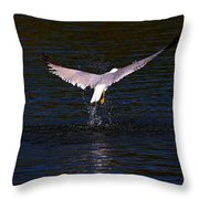 Up And Away II Throw Pillow