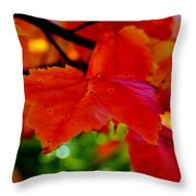 Up Close And Colorful Throw Pillow