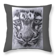 Up Close Clouded Leopard Throw Pillow