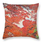 Up Close Flamboyant Throw Pillow