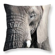 Up Close Throw Pillow