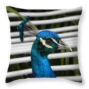 Up Close Peacock Throw Pillow