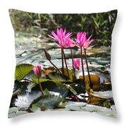 Up Close Water Lilies  Throw Pillow