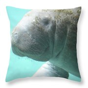 Up Close With A Manatee Throw Pillow