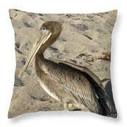 Up Close With A Pelican On A Sand Beach Throw Pillow