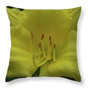 Up-close With A Very Bright Yellow Daylily Flower Throw Pillow