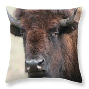 Up Cose And Personal 2 Throw Pillow