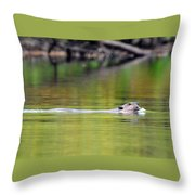 Up For Air Throw Pillow