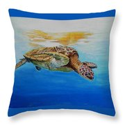 Up For Some Rays Throw Pillow