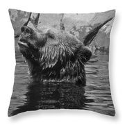 Up From A Dip Throw Pillow