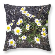 Up From The Asphalt I Throw Pillow by Anna Villarreal Garbis