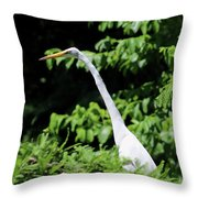Up In The Tree Throw Pillow