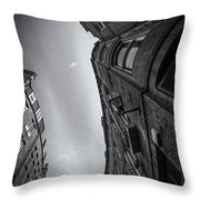 ... Throw Pillow