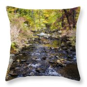 Up The River Gg  5671 Throw Pillow