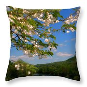 Up The River Throw Pillow
