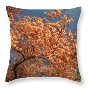 Up To The Cherry Flowers Throw Pillow