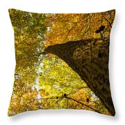 Up To The Top Throw Pillow