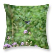 Up, Up And Away-black Swallowtail Butterfly Throw Pillow