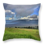Upcountry Maui Throw Pillow
