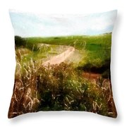 Uphill Curve Throw Pillow