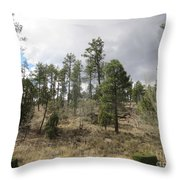 Uphill From Here Throw Pillow