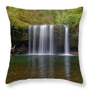Upper Butte Creek Falls In Fall Season Throw Pillow