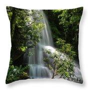 Upper Catawba Falls Throw Pillow