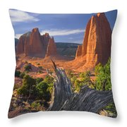 212645-upper Cathedral Valley  Throw Pillow