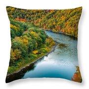 Upper Delaware River Throw Pillow